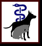 Dierenfysiotherapie Logo